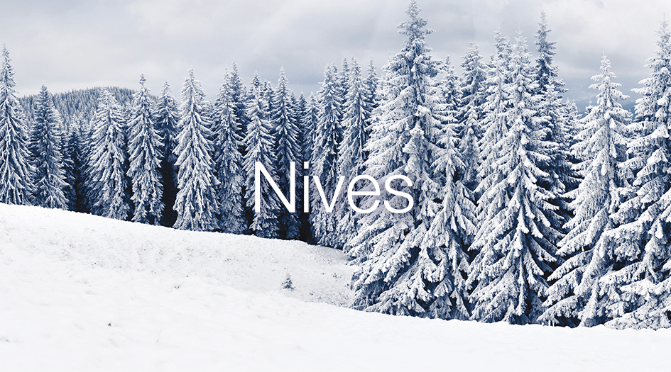 Imagen de portada Nives