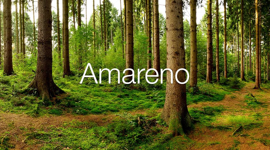 Amareno